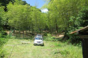 竹伐りの日