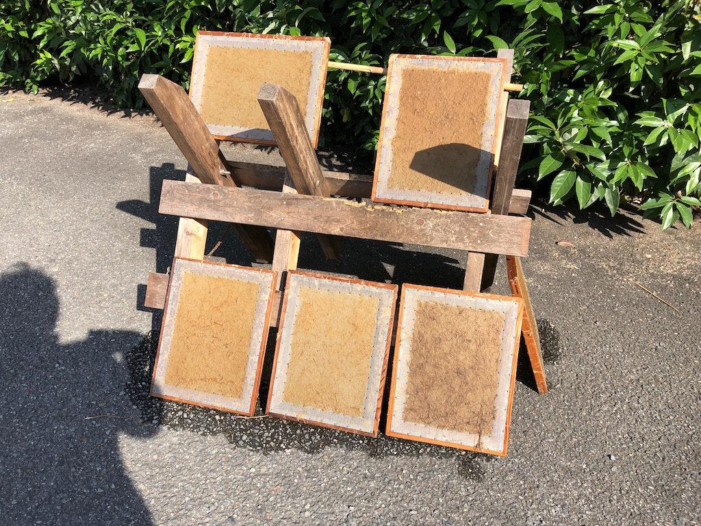 竹紙を漉くのにうってつけの日