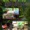 6月の展覧会「竹のチカラ、蛍のユメ」ご案内